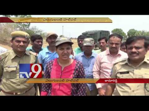 Wild Bear enters human settlement, captured - TV9