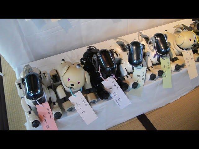 AIBOの「お葬式」、100台供養 司会は新型ロボ