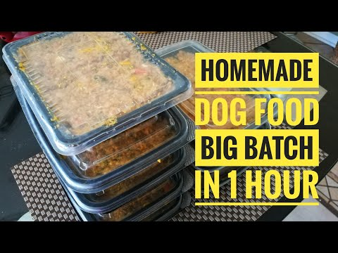 Homemade Dog Food Recipe - Vet Approved (2020)