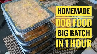 Homemade Dog Food Recipe (2020)