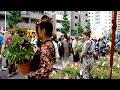 Tokyo in 2 minutes: Morning Glory Festival, Iriya 入谷 朝顔市 の動画、YouTube…