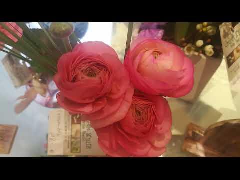 Цветочный магазин во Франции.
