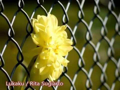 Lukaku / Rita Sugiarto