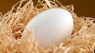 Яйцо куриное Полезный холестерин Фитнес питание