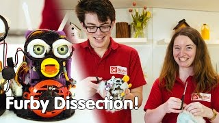 What's inside a furby? | Furby Dissection | We The Curious