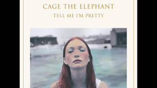 Cage The Elephant - Too Late To Say Goodbye