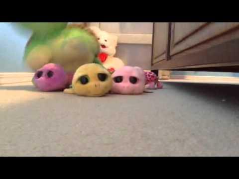Annual Turtle Race Beanie Boo Style