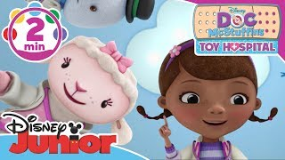 Doc McStuffins | Not For Touching Song | Disney Junior UK