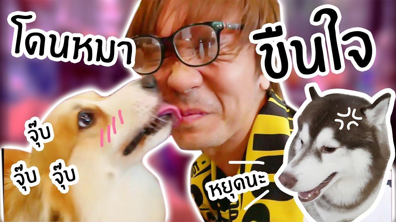 นอกใจหมา ไปโดนหมาเตี้ยตกหลุมรัก!! // หลอกแฟรงค์ว่าไปทำธุระ?