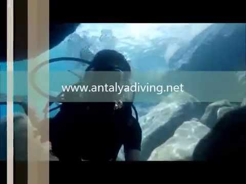 Antalya Dive Tours Diving Tour Price Cost Booking