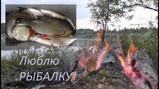 Люблю РЫБАЛКУ! Ночная рыбалка на фидер! На УХУ поймаем - Б.Р. №692