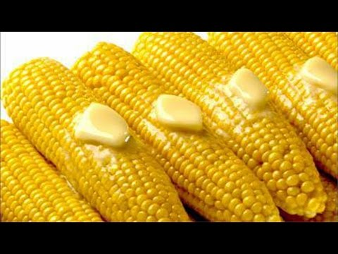 Processamento de Milho Verde - Comercialização