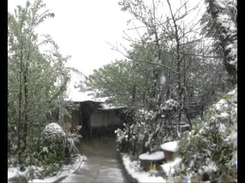 Tuyết rơi giữa tháng 3 ở Sapa (Snow fall in Sapa).flv