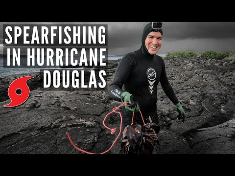 Spearfishing Hawaii DURING HURRICANE Douglas {Fish Everywhere!}
