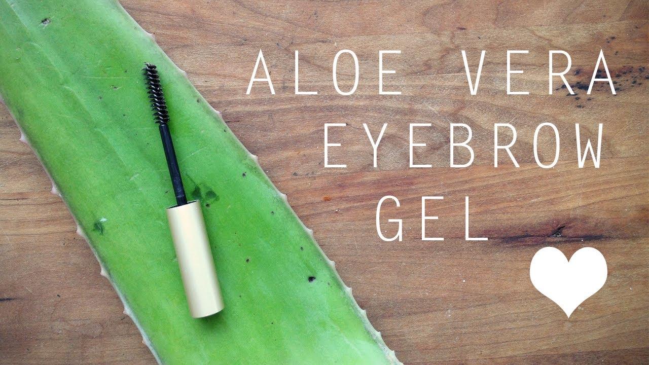 Diy Aloe Vera Eyebrow Gel Youtube