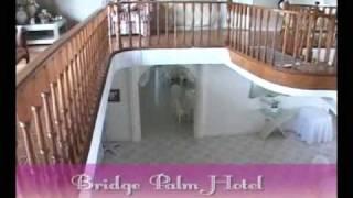 Bridge Palm Promo