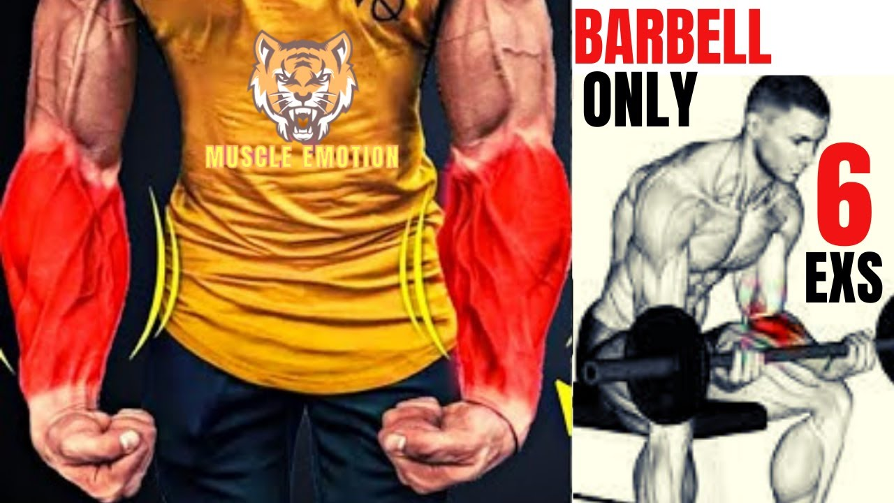 6 BEST Exercises for Bigger Forearms Workout