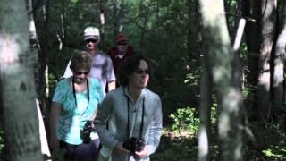 Tabusintac - Birdwatching - Discover Miramichi