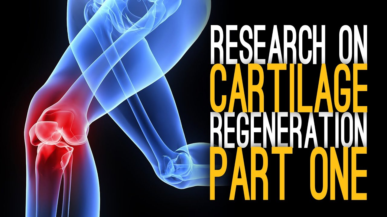 Cartilage on black market
