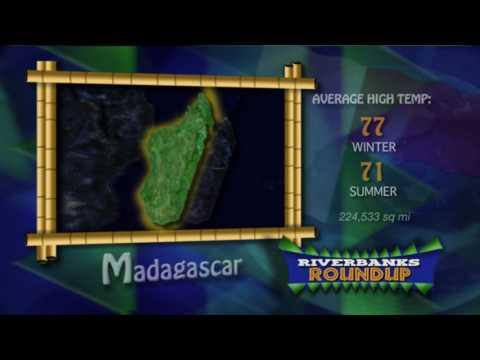 {TV-ANIMATION} Wild About Madagascar: Riverbanks Roundup (2008)