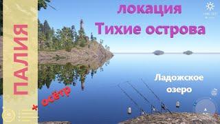 Русская рыбалка 4 - Ладожское озеро - Палия на живца