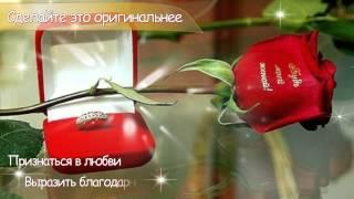 Говорящие цветы   надписи и фото на цветах Молдова(Мы украшаем живые цветы наклейками и надписями. Ещё бы: такой цветок умеет говорить слова любви без Вас!..., 2015-05-11T12:59:56.000Z)