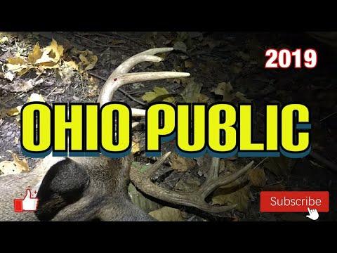 Ohio Public Land: Archery 10 Point