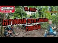 Pikat Kutilang Ribut Suara Tajam Cengkram Tanpa Pulut Tanah  Mp3 - Mp4 Download