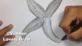 How to draw a starfish - Drawing Sea animal for kids - YouTube Videos