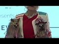 Money Talks: Westminster dogs show off latest fashion