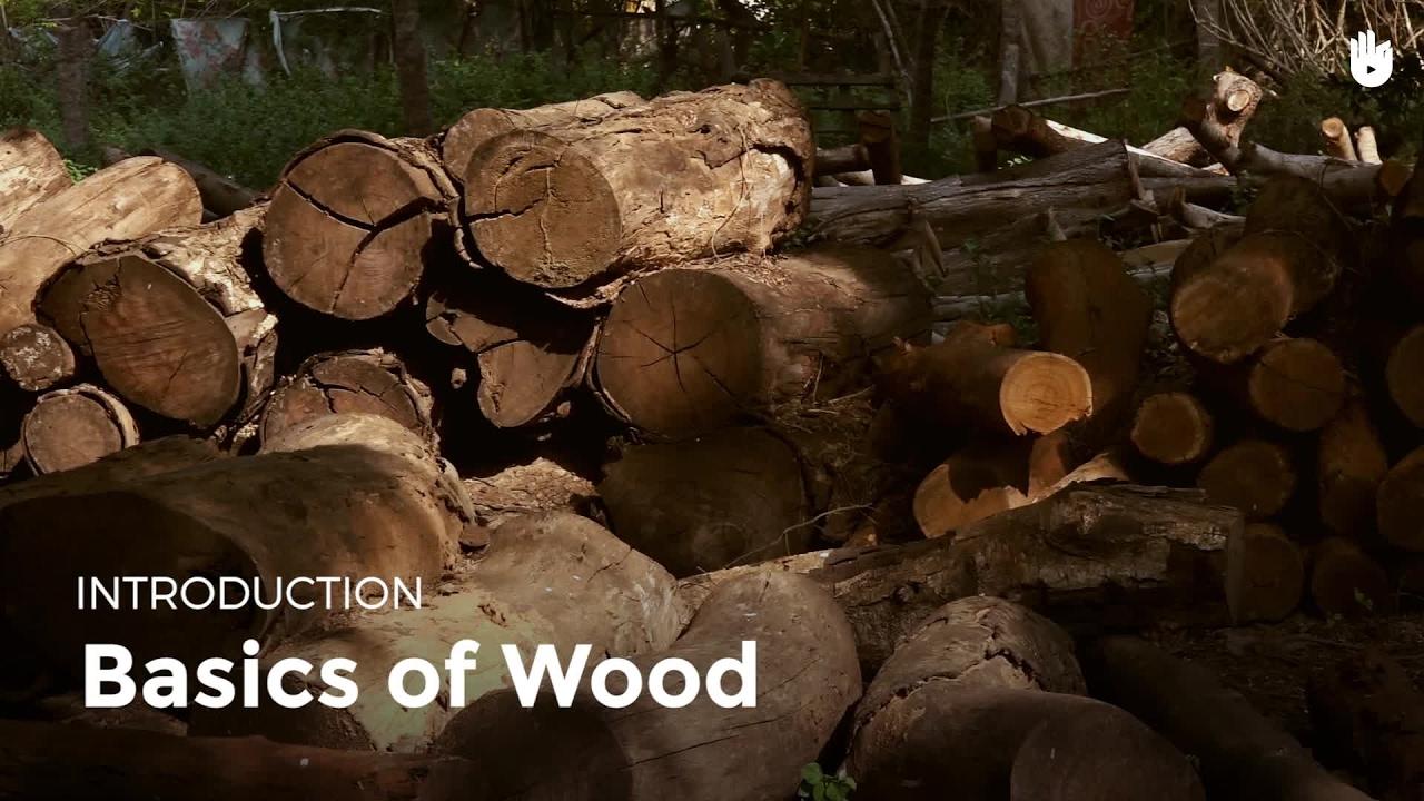 Basics of Wood | Woodworking - YouTube