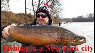 Epic Trout Fishing in a New York City