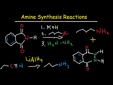 Amine Synthesis Reactions Organic Chemistry - Summary & Practice Problems