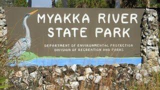 myakka river sp weekend camping trip