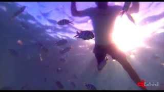 Diving BLUE BAY 3 | Mauritius Island