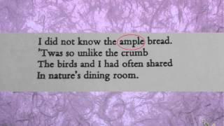 Poem 82 Analysis of Emily Dickinson