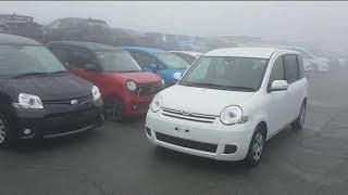 Купили Авто В Японии С Аукциона, Что Дальше? Кому Ещё Что Платить?