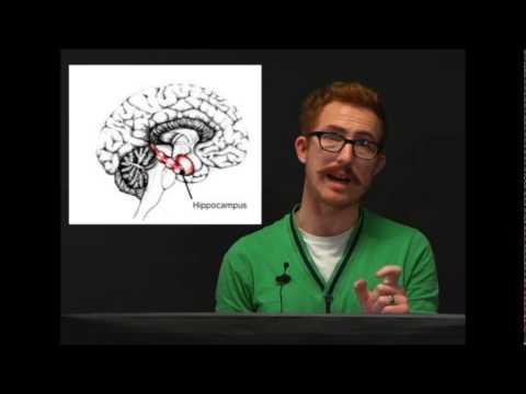 Case Studies in Psychology pt1 Dr. Chris Moulin