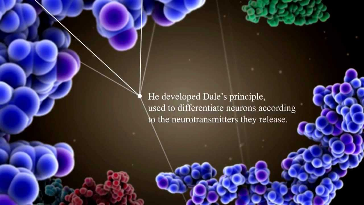 celebrating 100 years of life changing discoveries dale to davies
