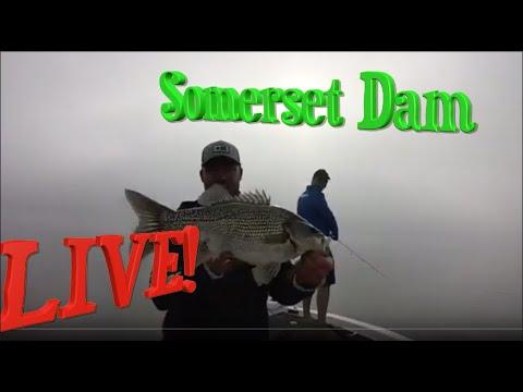 Somerset Bass Fishing
