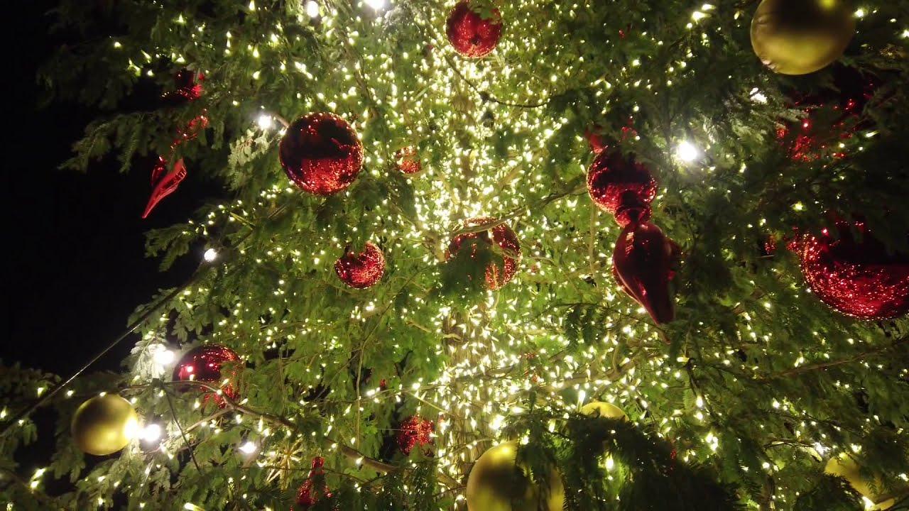 マーケット 赤レンガ クリスマス