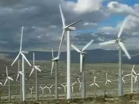 Anggota Kongres Nyesel Bantu Tagar #WindmillsCauseCancer Jadi Tren di Medsos