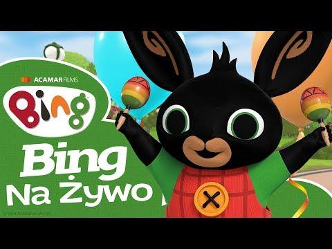 Bing Po Polsku Całe Odcinki  Oglądaj Binga