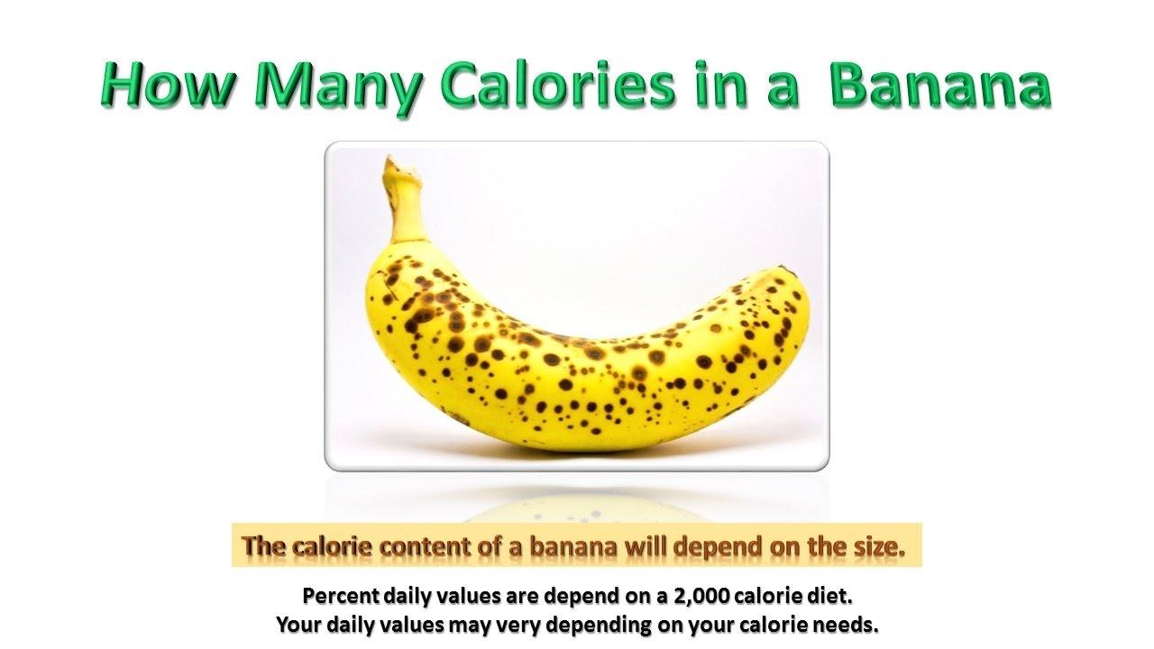 low calorie healthy meals vindeca