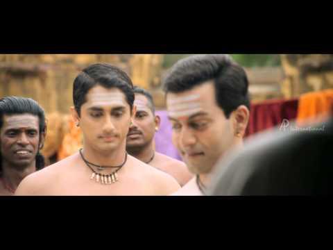 Kaaviya Thalaivan Tamil Movie - Nasser selects Siddharth over Prithviraj