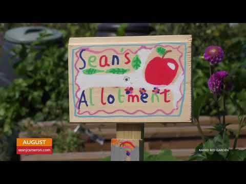 Vegetable Gardening Tasks for August in the Kitchen Garden