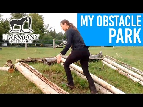 My Obstacle Park- what my horses get to practice on