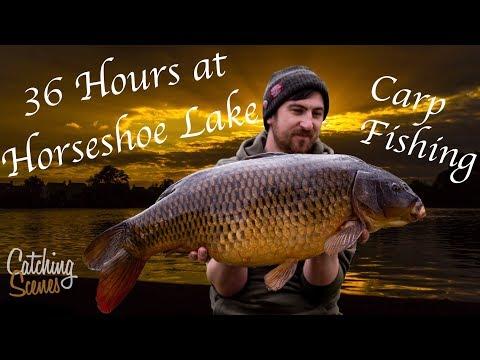 Carp Fishing - 36hrs At Horseshoe Lake - Catching Scenes #002