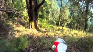 Невероятное видео! Орел против параплана