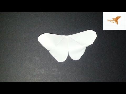 Hướng dẫn gấp con bướm đơn giản nhất- Guide simplest folding butterfly